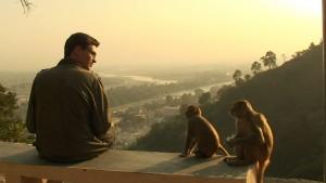 Marc se questionnant en regardant deux petits singes.