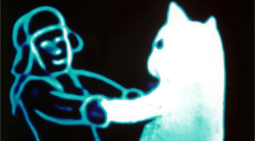 Dessin de Le chat de neige