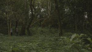 Éliane et Romes marchent dans la forêt mexicaine, dans Mes nuits feront écho.