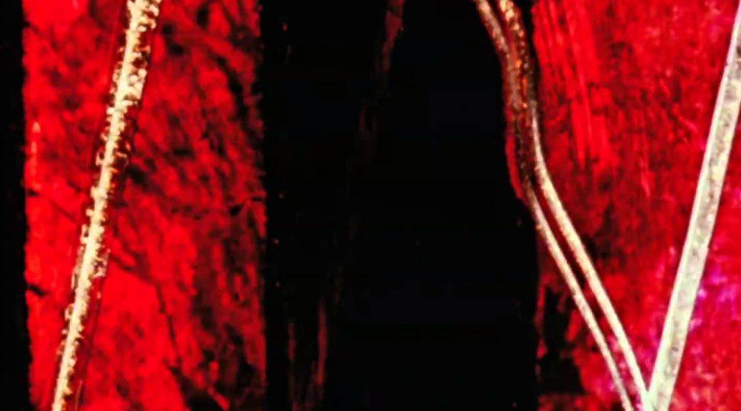 Caprice en couleurs - extrait