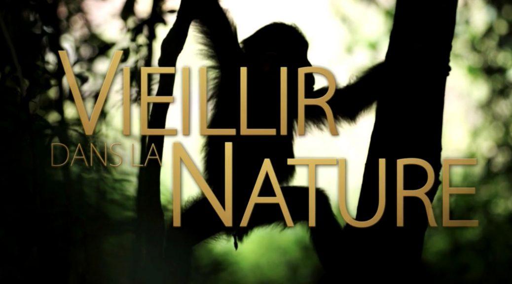 Vieillir dans la nature - La vie prend fin