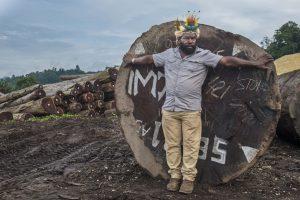 Mundiya Kepanga compare sa taille à celle d'une grume, dans Frères des arbres