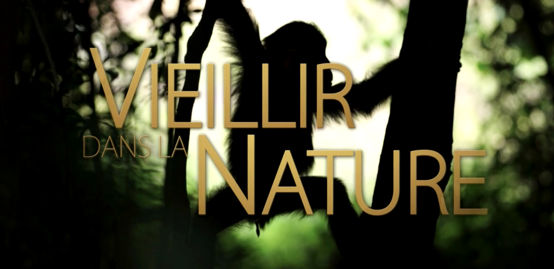 Vieillir dans la nature – La vie prend fin