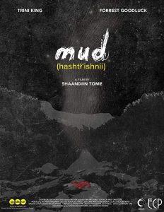 Mud - affiche