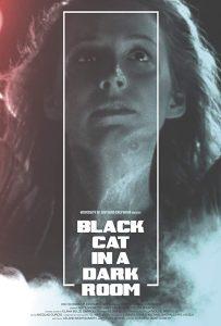 Black Cat in a Dark Room Poster