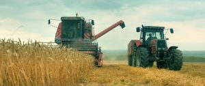 Au nom de la terre - Un plaidoyer pour la cause paysanne