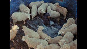 BURIAL RESURRECTION - Poésie et dissonance
