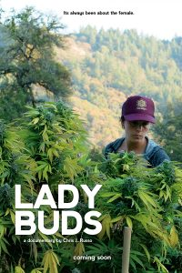 Lady Buds - poster
