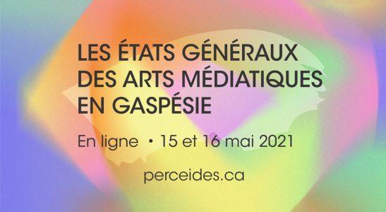 Les premiers états généraux des arts médiatiques en Gaspésie — Questionnement